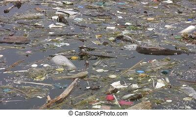 lake., flotter, déchets