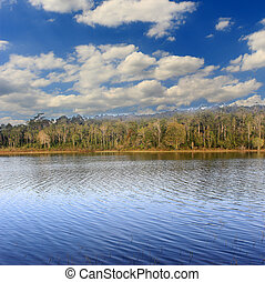Lake forest with blue sky and clouds
