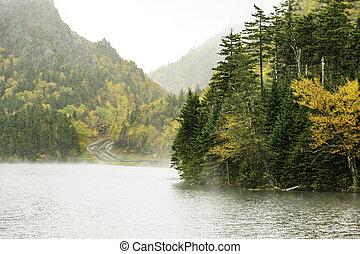 Lake Gloriette in fog