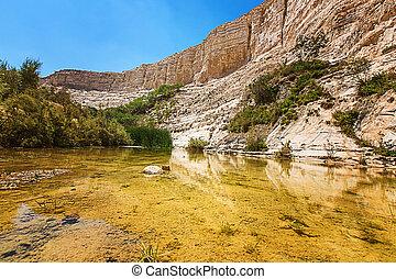 lake in a rocky canyon