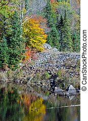 Lake in Algonquin Park during the fall season