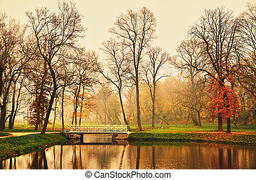 Lake in autumn park