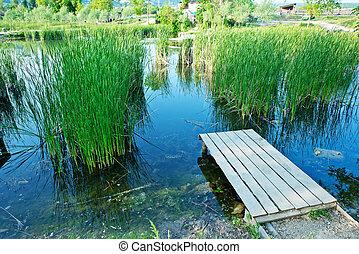 Lake in Crimea - lake in Crimea,summer Lake and sky