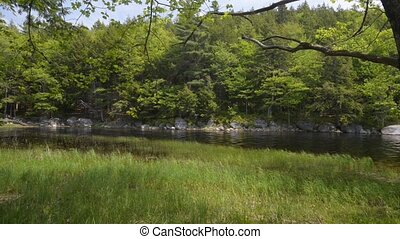 Lake in Forest, With Sound. High definition. Location:...