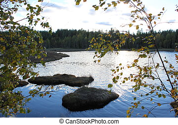 Lake In Front Of Forest