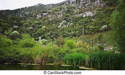 Lake in Montenegro, the village of Morin, Kotor Bay.