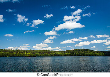Lake in national park in summer