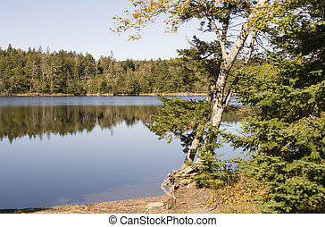 Lake in Nova Scotia - Quiet water of a small lake in Nova...