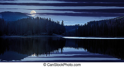 lake in pine forest near the mountain at night