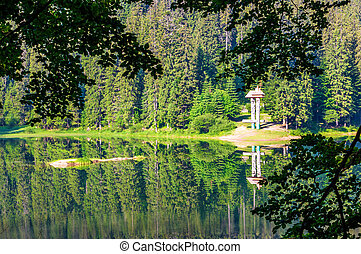 lake in Synevyr national park in summertime. beautiful...