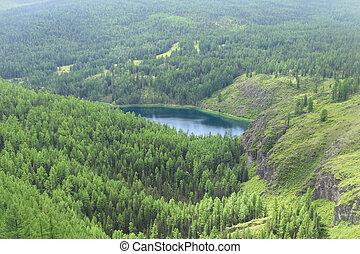 Lake in taiga, Altai, Russia