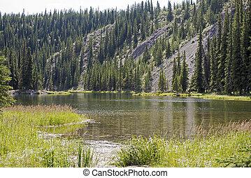 Lake in the Alaskan wilderness