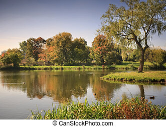 Lake in the autumnal park