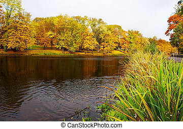 lake in the city park in autumn