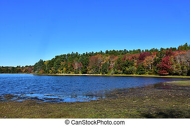 Lake in the Fall with Trees Turning Colors