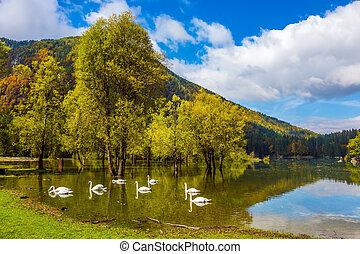 Lago de Fusine - Lake Lago de Fusine. Laghi di Fusine,...