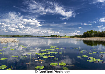 Lake view with water lilies. Mazury, Poland. aRGB.