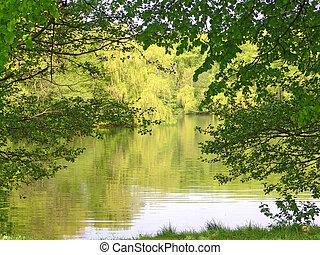 Beautiful summer green lake landscape.
