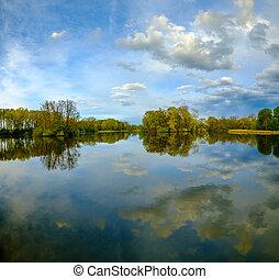 Lake landscape in a wood