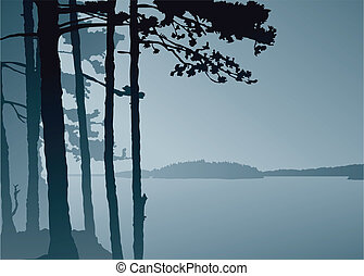 Lake Lookout - Silhouette of a misty view across a northern...