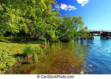 Lake Minocqua Wisconsin Landscape