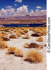Lake Mohave Desert Landscape Nevada