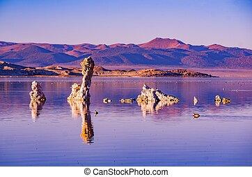 Lake Mono Salt, USA, California, Bodie