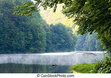 Lake morning in summer
