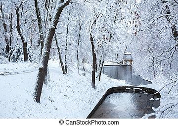 Lake near the Chinese bridge in Ukraine