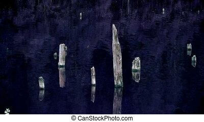 Lake night time