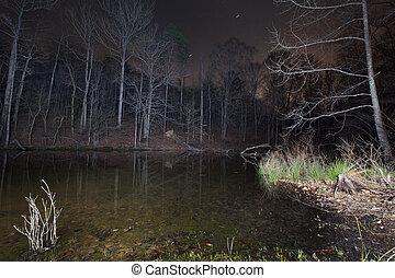 Lake Norman Cove  - A cove on Lake Norman, NC at night.