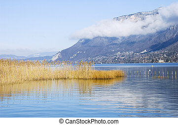 Lake of Annecy and reeds