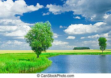 Lake-on-a-field horizonta