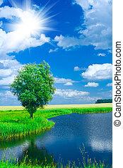 lake on a field