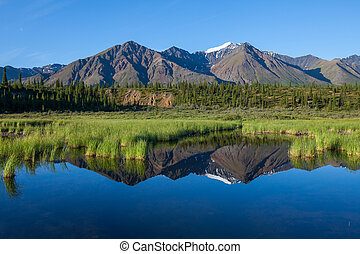 Lake on Alaska - Mckinley reflection in lake on Alaska