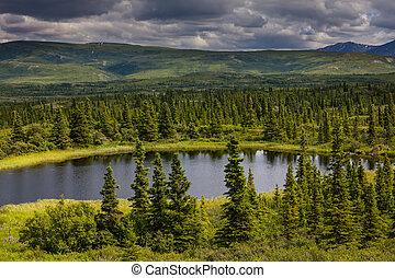 Serenity lake in tundra on Alaska