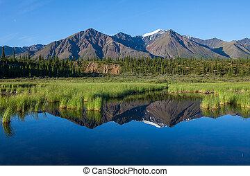 Lake on Alaska - Mckinley reflection in lake on Alaska