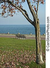 Lake ontario in Autumn
