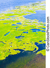 Lake pollution