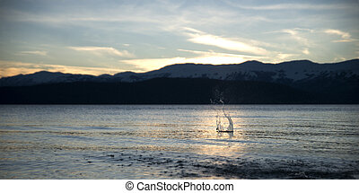 Lake Prespa in Macedonia. Sunset with stone splash