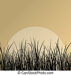 Lake reed and wild water plants detailed silhouettes outdoor...