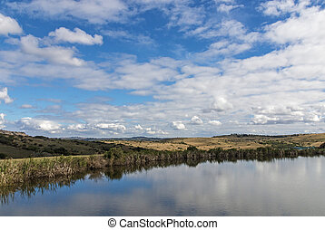 Lake Reflecting Blue Cloudy Sky Landscape in South Africa