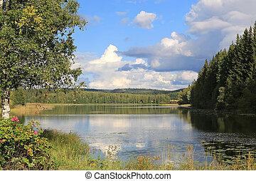 Lake Scenery in Central Finland