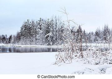Lake shore and frozen trees at winter season