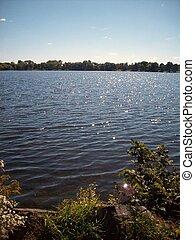 Lake Shoreline