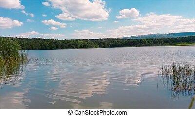 Lake - A clean summer lake amid nature.