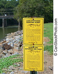 Lake sturgeon are being reintroduced to the Coosa River Basin. This Georgia Department of Natural Resources sign is at Carter Lake.