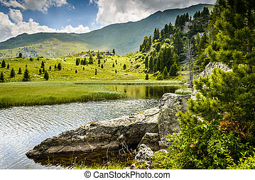 Lake - Summerlandscape with lake and Alps-Biosphaerenpark...