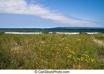 Lake Superior Background