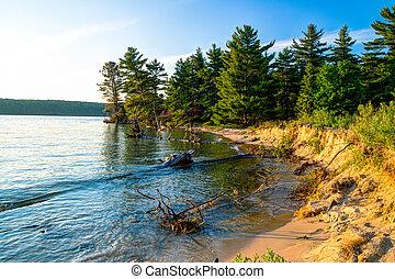 Remote wooded shoreline of wild and pristine Lake Superior.